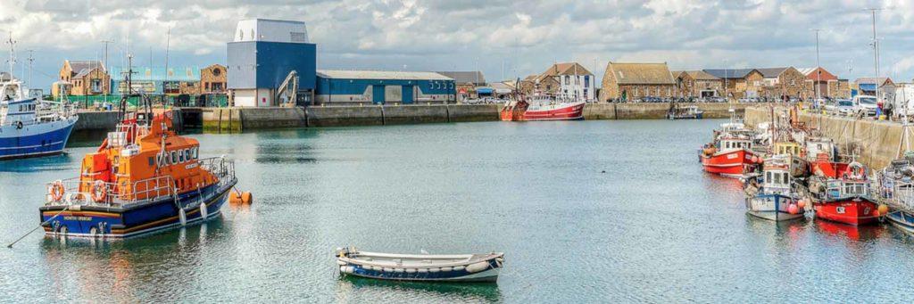 Fish Display Counters Howth Ireland
